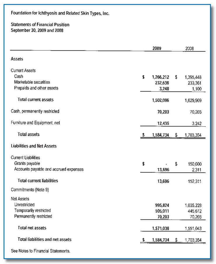 FY 2009 Financial Statement
